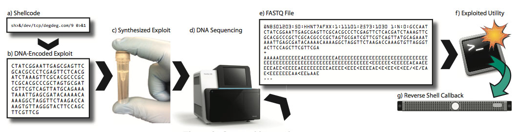 DNA-based malicious code injection attack