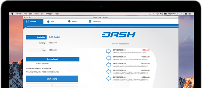 dash bug bounty