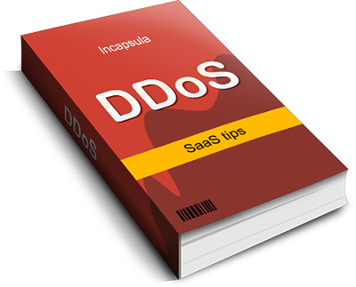 DDoS eBook