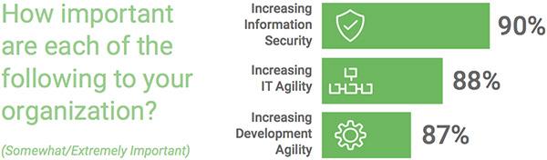development agility application security