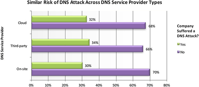 companies unprepared DNS attacks