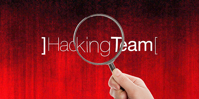 man behind hacking team hack