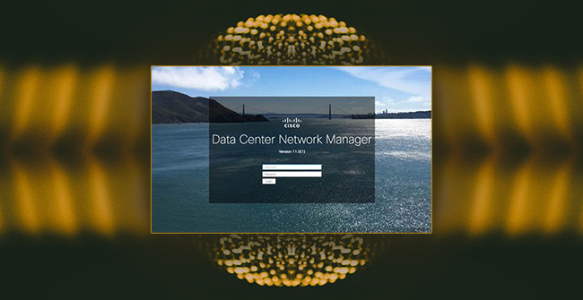 Cisco Data Center Network Manager flaws