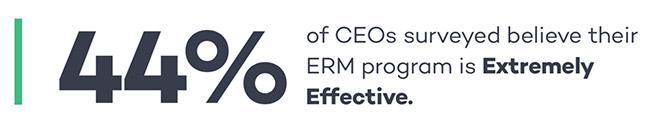 enterprise risk management programs