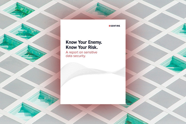 whitepaper know your enemy