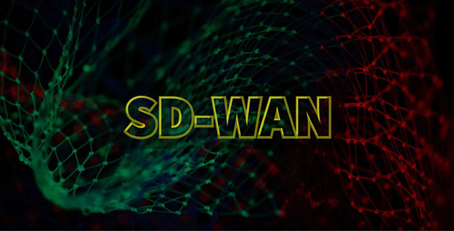 Citrix SD-WAN flaws