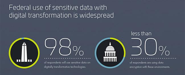 government digital transformation risk