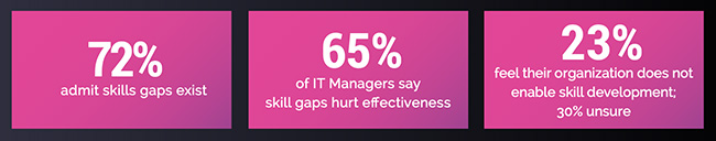 security teams skills gap