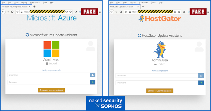 fake DNS update