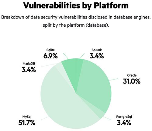 High-risk vulnerabilities rise