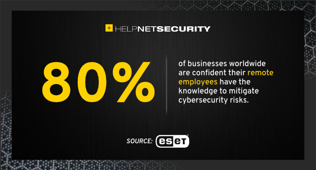 remote employees mitigate risks