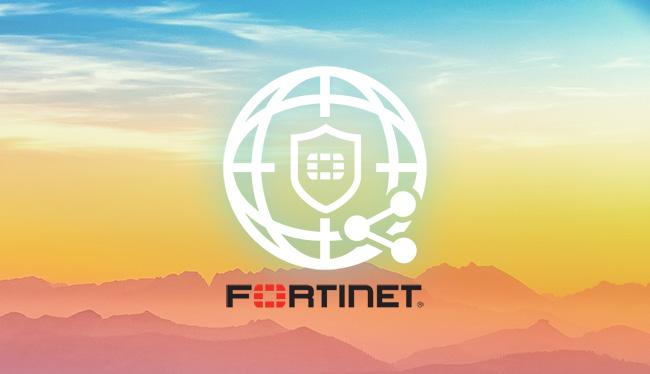 FortiWeb vulnerability