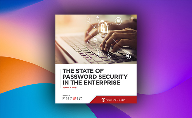 report password security enterprise